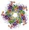 Stock Image : Capsid istoty ludzkiej major brodawczaka proteiny wirus