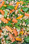 Stock Image : Carrot and chick pea salad