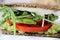 Stock Image : Cashew mayo sandwich upclose