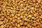 Stock Image : Cat food