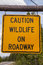 Stock Image : Caution Wildlife on Roadway Sign