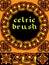 Stock Image : Celtic brush for  frame