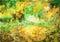 Stock Image : Cg painting autumn background