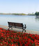 Stock Image : Chair in the lakefront