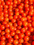 Stock Image : Cherry tomato background