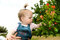 Stock Image : Child saw the red pomegranate flowers