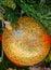 Stock Image : Christmas ball