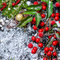 Stock Image : Christmas card of evergreen branches, red leaves, berry with sno