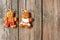 Stock Image : Christmas homemade gingerbread couple cookies