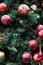 Stock Image : Christmas ornaments on tree