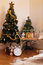 Stock Image : Christmas room golden decoration