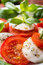 Stock Image : Classic Caprese Salad