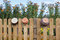 Stock Image : Clay pots hanging on the fence