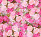 Stock Image : Close up pink roses background
