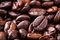 Stock Image : Coffee seed