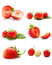 Stock Image : The collage made from the delicious  strawberries