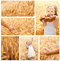 Stock Image : Collection of photos wheat field and little girl