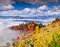 Stock Image : Colorful autumn morning in the Carpathian mountains.