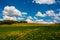 Stock Image : Colorful Landscape