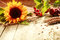 Colorful rustic Thanksgiving background