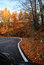 Stock Image : A colourful curving autumn road