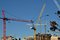 Stock Image : Construction Cranes of the Skyline