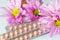 Stock Image : Contraceftive Pills.
