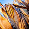 Stock Image : Corn closeup on the stalk