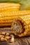 Stock Image : Corn cobs