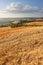 Stock Image : Italian Countryside Landscape