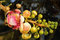 Stock Image : Beautiful cannonball flower ,Couroupita guianensis