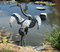 Stock Image : Crane garden sculpture