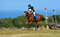 Stock Image : Cross country rider and horse
