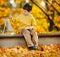 Stock Image : Cute little boy painting in golden autumn park