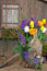Stock Image : Decorative tulip floral display