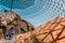 Stock Image : Desert Dome Henry Doorly Zoo