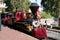 Stock Image : Disneyland Train