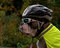 Dog is protected in traffic with sunglasses bike helmet and reflective vest