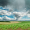 Stock Image : Dramatic sky over green field