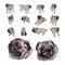 Stock Image : Drawing set of pug