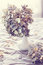 Stock Image : Dried hydrangea flowers