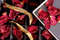 Stock Image : Dried rose petals