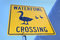 Stock Image : Duck Crossing Sign