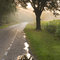 Stock Image : Dutch country road and farm