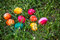 Stock Image : Dyed Easter Eggs in the Grass
