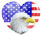 Stock Image : Eagle American love heart