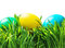 Stock Image : Easter eggs on the grass isolated on white