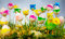 Stock Image : Easter eggs