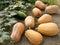 Stock Image :  Eerste geoogste pompoenen