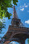 Stock Image : Eiffel Tower and leaves